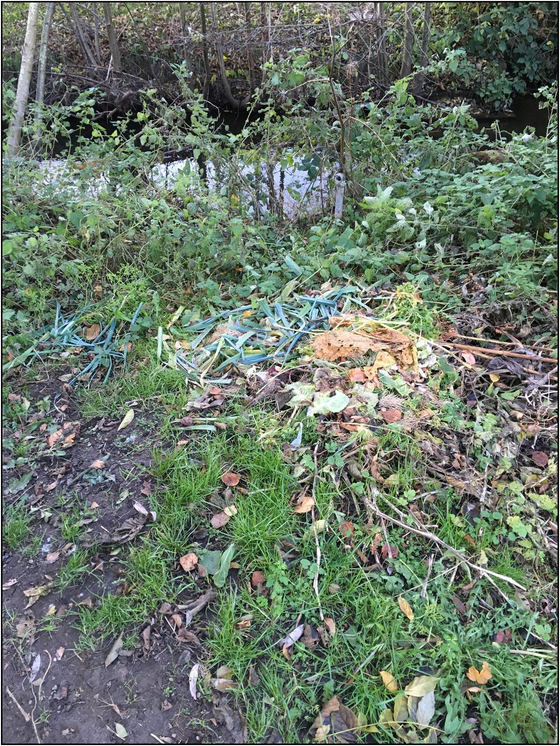 Les déchets verts, loin de la rivière ... Pourquoi ? Le SM3R sensibilise !